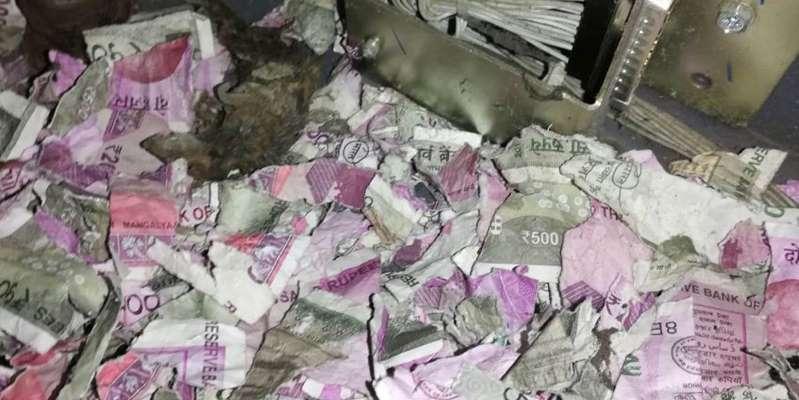 Inde : des rats grignotent plus d'un million de roupies dans un distributeur