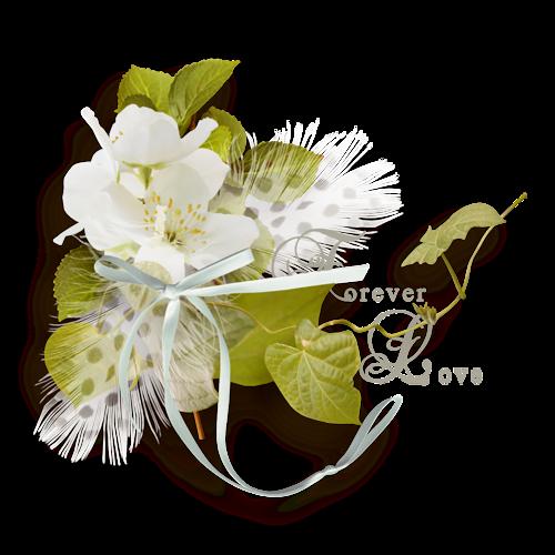 Ornements Floraux Série 41