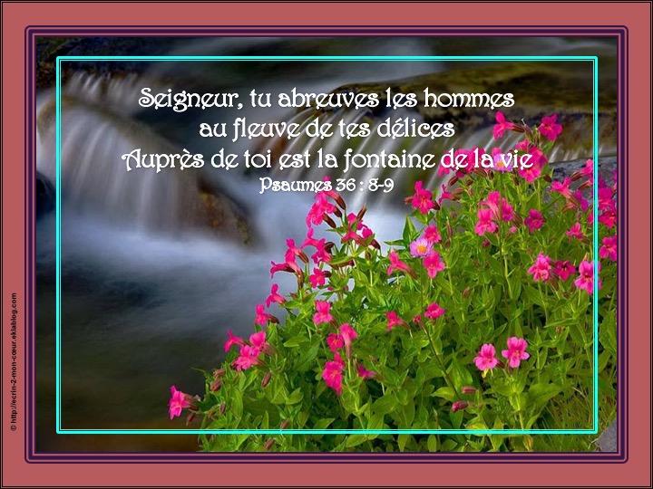 Auprès de toi est la fontaine de la vie - Psaumes 36 : 9-10