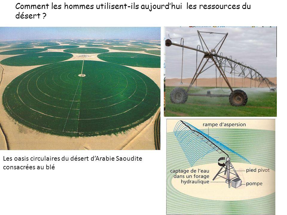 """Résultat de recherche d'images pour """"arabie saoudite champs circulaires"""""""