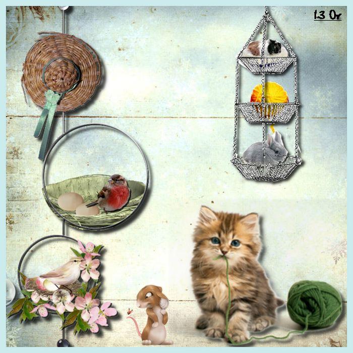 vos créations2 : naissance chez les animaux