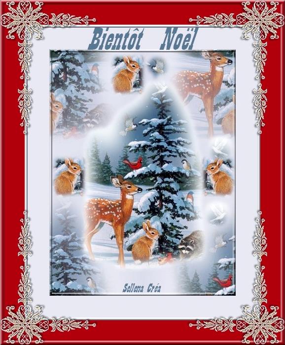 *Bientôt Noël*