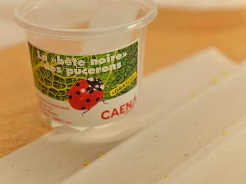 Pour lutter contre les pesticides