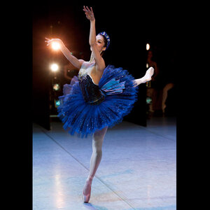 dance ballet story life imperial ballet australian ballet balanchine neoclassical ballet