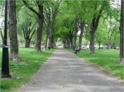 Les Acrobois : un parc où les enfants s'évadent
