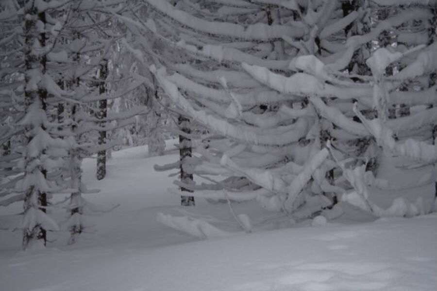 L'hiver,thème de TATAR@Y,pour ce dimanche