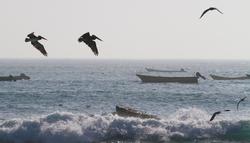 Sur la route (aventureuse) de la Isla Damas...