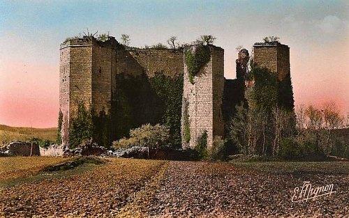 Château de Montfort (Côte-d'Or)