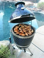 Wood Burning BBQ Grills - Buy Electric, Charcoal and Propane Grills At Best Prices