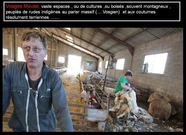 Parler lorrain 14 Marc de Metz 15 11 2012