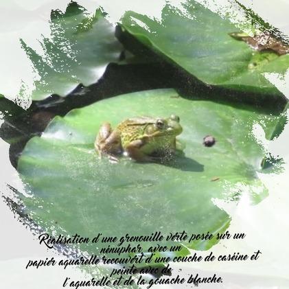 Dessin et peinture - vidéo 3340 : Comment peindre une grenouille sur un nénuphar ? - gouache et aquarelle.