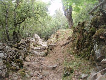 Le vieux chemin de bergeries
