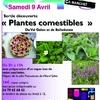 affiche_plantes_comestibles3.jpg