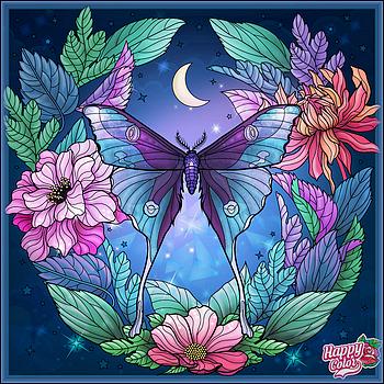 Papillon de Nuit.