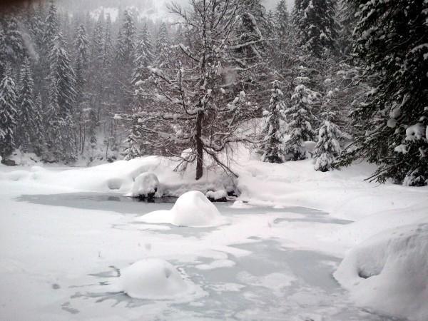 2013--11.02--LAC-VERT-hivernal.jpg