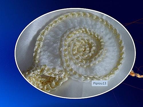 ammonite2jpg.jpg