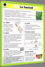 Documentaires sur les végétaux