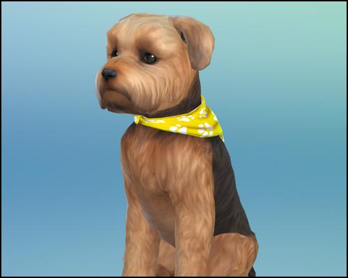 [Sims 4] Sun & Friends - CC