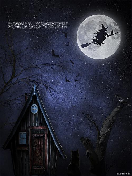Cartes Halloween 2019