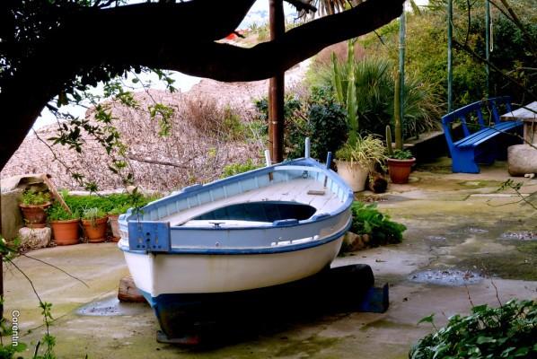 01---Barque.JPG