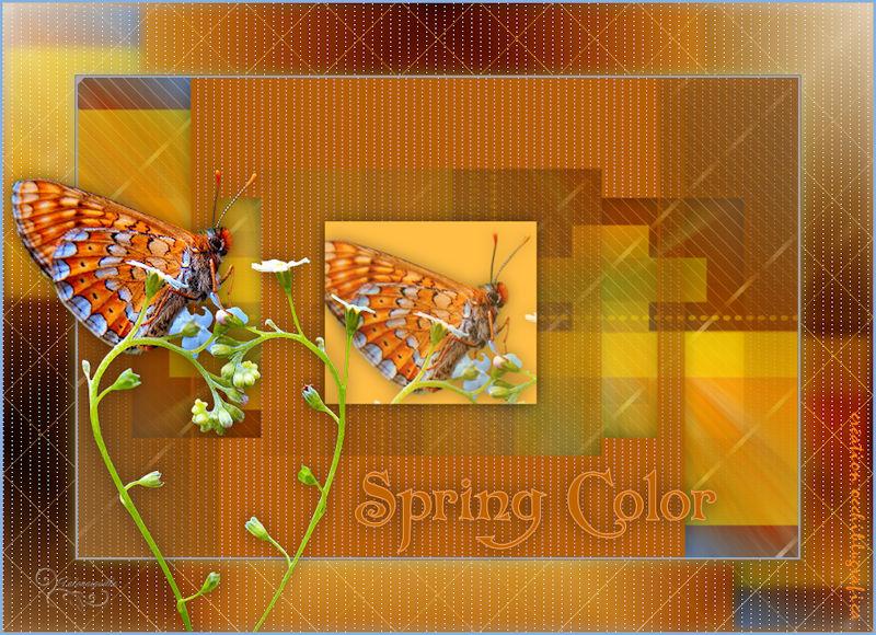 *** Spring Color ***