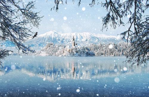 Beauté de l'hiver
