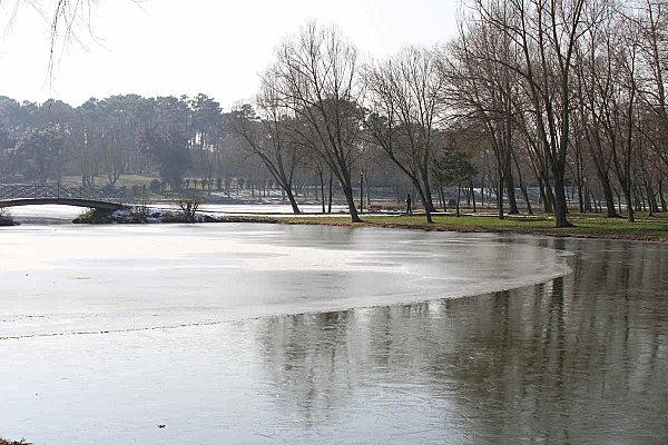 lac gelé -1-
