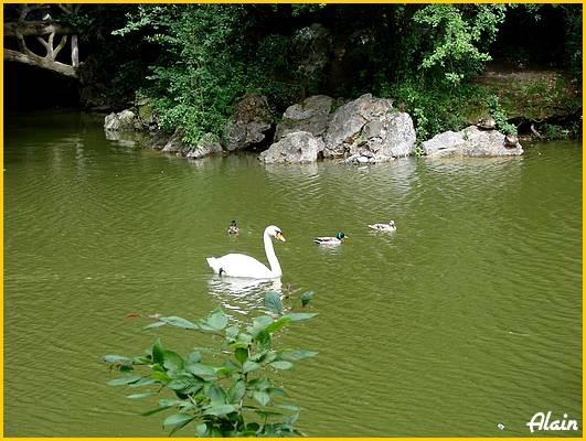 Parc_Oberthur_Juin07__023