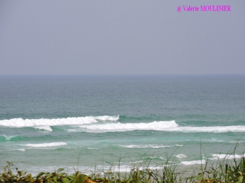 Biscarrosse : mes photos page 3