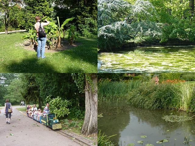 Botanique de Metz 14 - 16 07 10