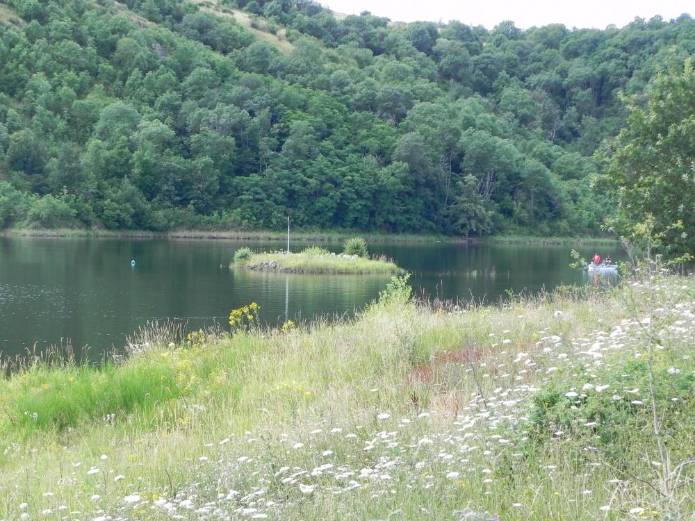Le Lac de Villerest