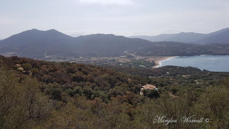Corse : Belvédère-Campomoro