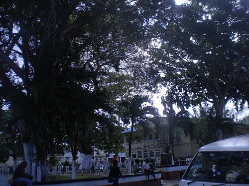 Madinina 2011 1240