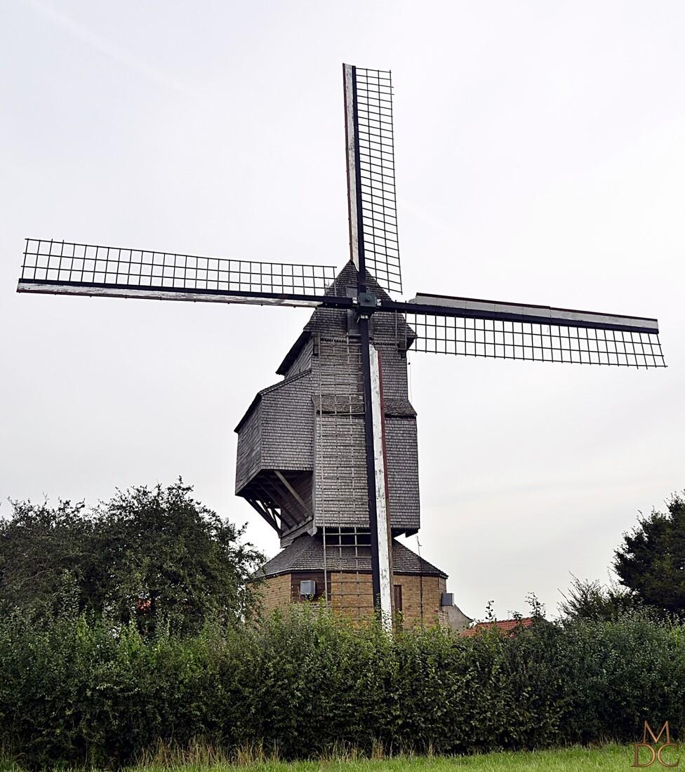 NOORMEULEN ou MOULIN du Nord – HONDSCHOOTE – (59 Nord)
