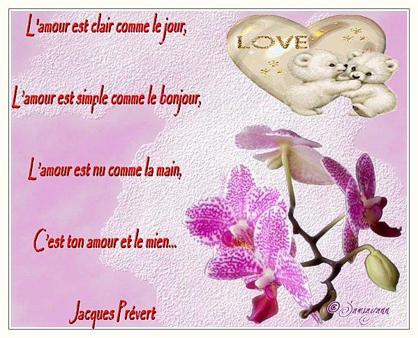 Amour Poèmes Page 6 Passion Des Fleurs