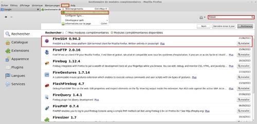 Accéder à un serveur SSH avec un navigateur