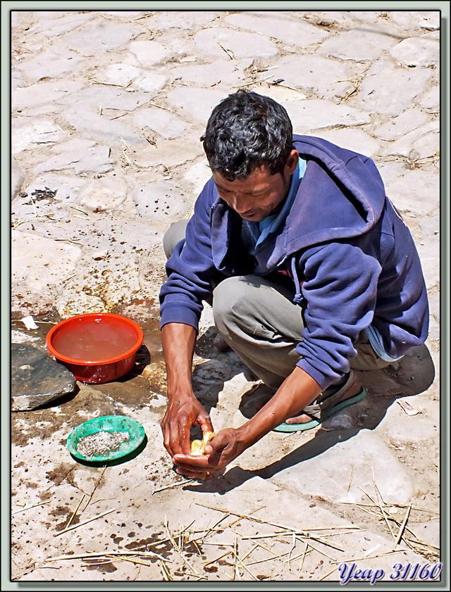 Blog de images-du-pays-des-ours : Images du Pays des Ours (et d'ailleurs ...), Tout se passe dans la rue, de l'élevage au bain du caneton en passant par la lessive - Khokana Népal