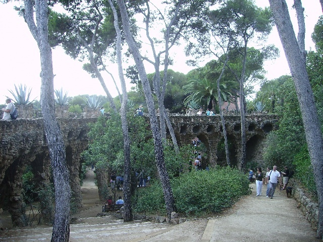 le parc avec ses arbres