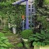 petit jardin avec pergola