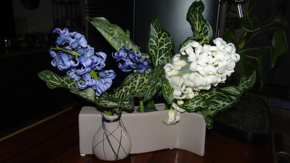 Votre Marché de la Semaine + le Bouquet du jardin