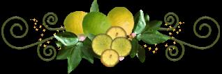 """Résultat de recherche d'images pour """"barre de séparation citron"""""""