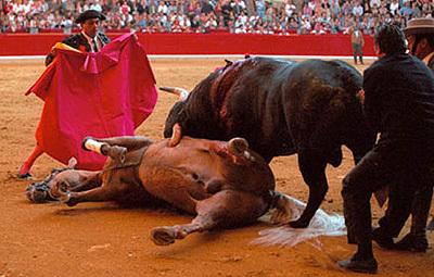 Lutte Anti corrida (cliquer sur l'image)