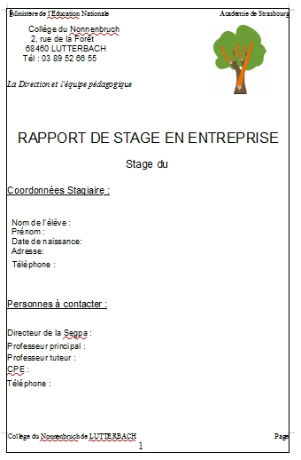 cfg   rapport de stage  cv  oral