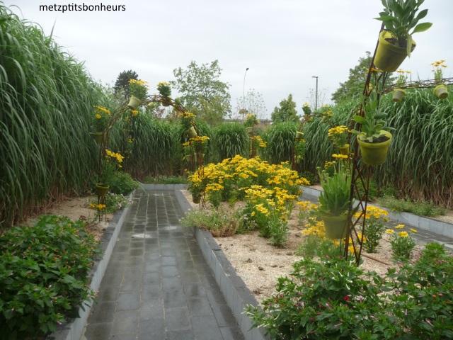 Le jardin des Traces....