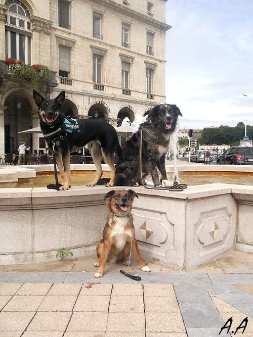 Avec Sarah, Enee, Junior et Fi'ona