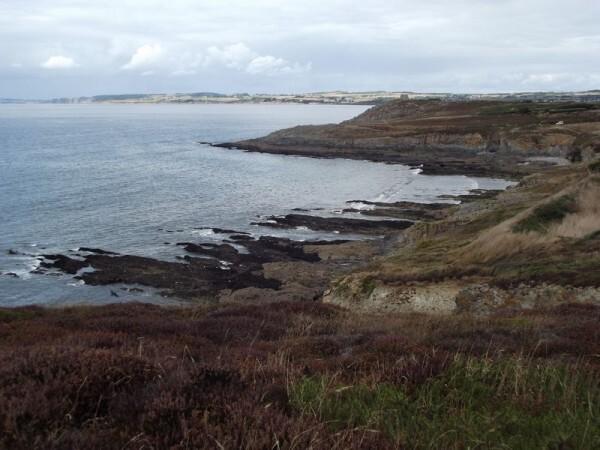 Pointe Talagrip01
