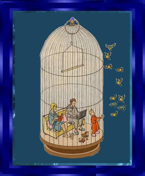 Nous vivons en cage