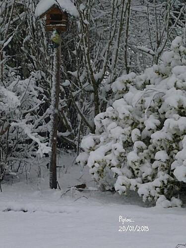 neige-20-janv-2013--15-.jpg