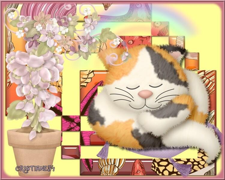 Défi pour Beauty Le chat dort