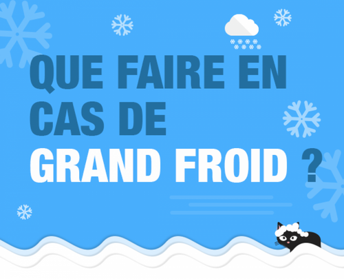 Précautions grand froid